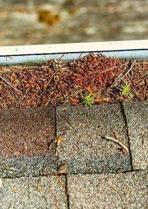 Roof Maintenance Ann Arbor Michigan