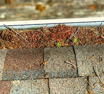 Roof Maintenance Ann Arbor Michigan