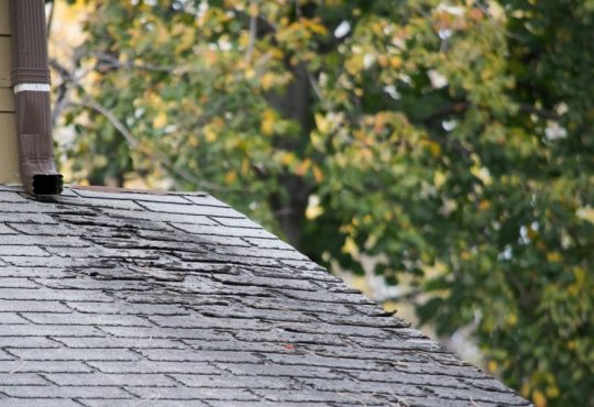 Why You Need To Know About Preventative Roofing Maintenance in Ann Arbor Michigan