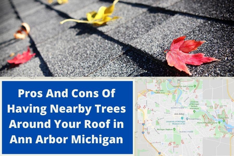 Roof Maintenance in Ann Arbor MI